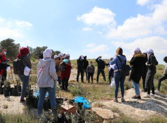 Photo of youth while they are volunteering to plant olive trees to help Palestinian farmers on the occasion of Land Day in Twaneh in the south of West Bank -Copy rights for ActionAid Palestine 2021)